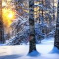 Зимние пейзажи — 12 фото