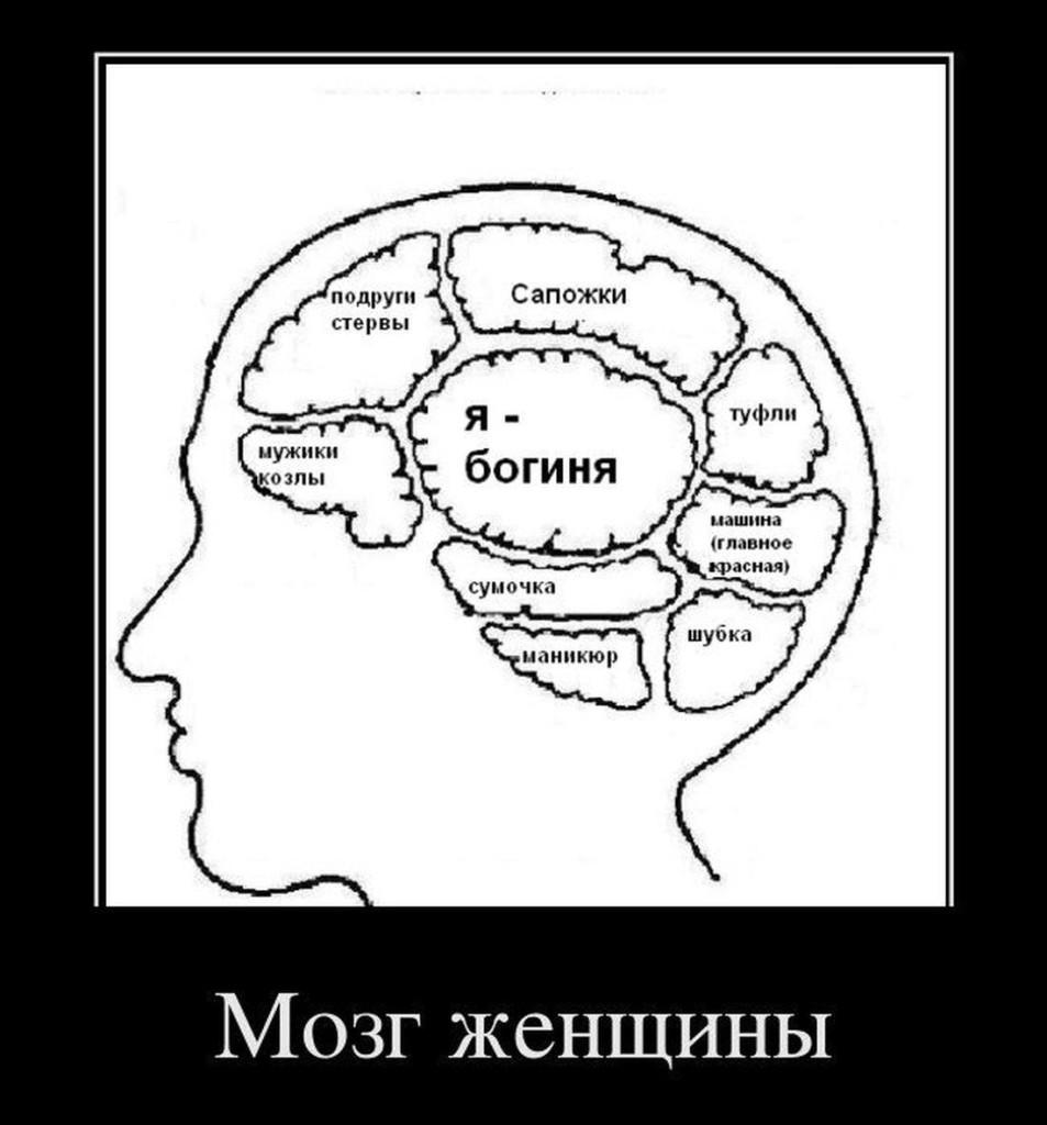 pochemu-devushki-ebut-mozgi