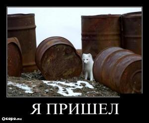 funium_ru_123456 (15)