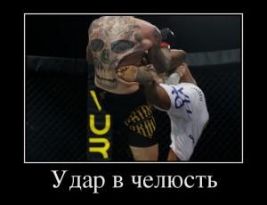funium_ru_123456 (43)