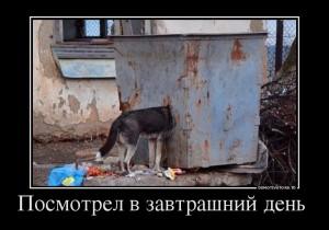 funium_ru_123456 (57)