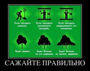 funium_ru_123456 (75)