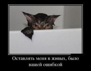 funium_ru_123456 (87)
