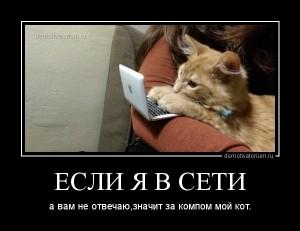 funium_ru_123456 (89)