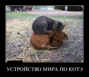 funium_ru_demotivatory-12 (5)