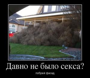 funium_ru_demotivatory-12 (82)