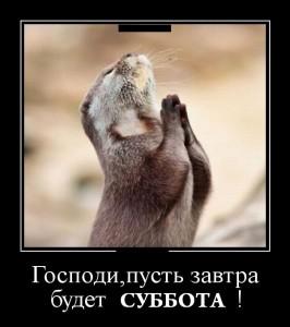 funium_ru_demotivatory-prikoly-61 (124)