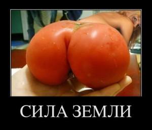 funium_ru_demotivatory-prikoly-61 (172)