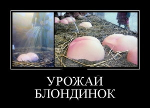 funium_ru_demotivatory-prikoly-61 (174)