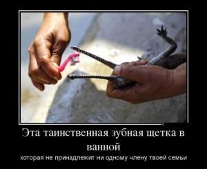 funium_ru_qq_100 (6)