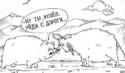 фаниум-ру-заходи (182)