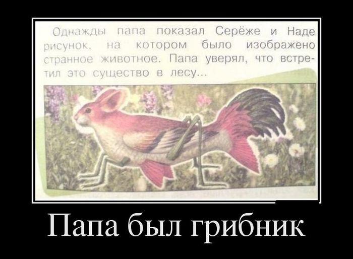 funium_ru-35262 (31)