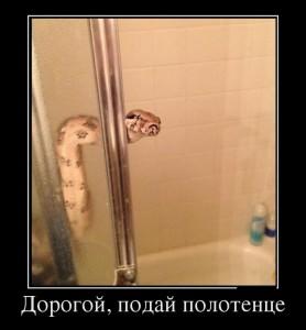 funium_ru_100000000 (11)