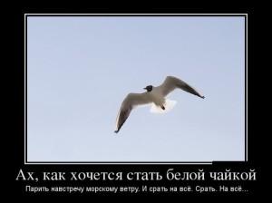 funium_ru_100000000 (31)