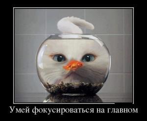 funium_ru_100000000 (33)