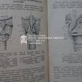 Советская книга про рак гортани =(