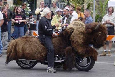 bizon_na_kolesakh