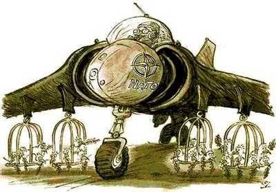 bombardirovschikSKuricami