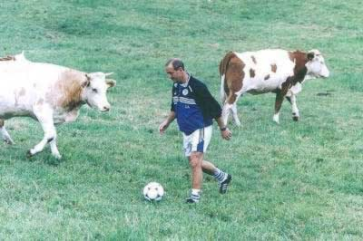 cowFootball