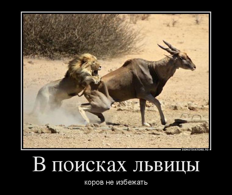 funium_ru-00001 (32)