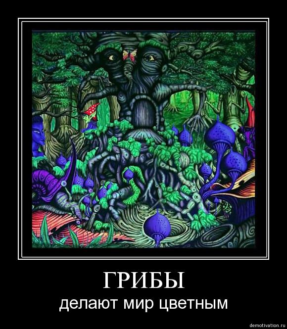 funium_ru-g-g-g-6-7-8 (271)