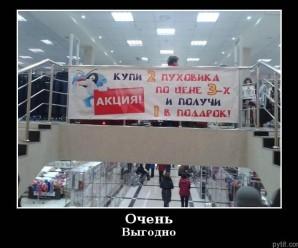 демотиваторы про магазины