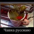 Демотиваторы и приколы про кофе «Руссиано»