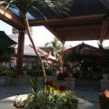 Отзыв с фото о китайском аэропорте в Саньи (Phoenix). Китай отдых отзывы фото. №1