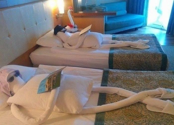 Приколы про отели (18)