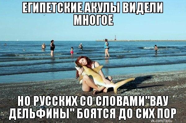 приколы про русских туристов (6)