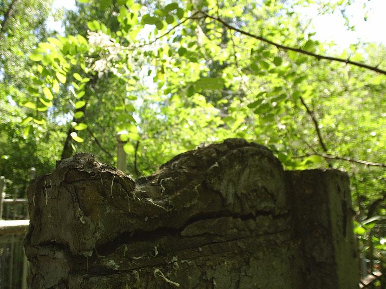 фото-кладбища-(10)