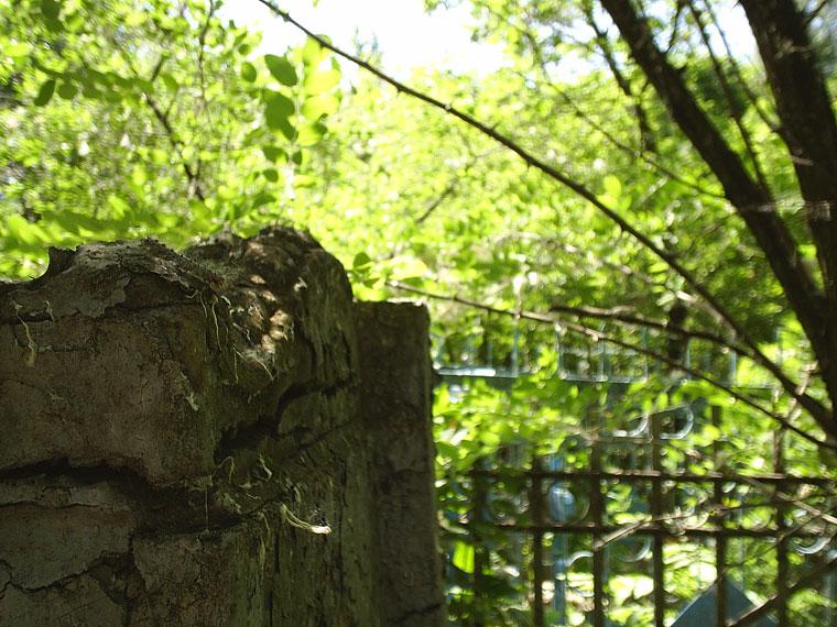 фото-кладбища-(11)