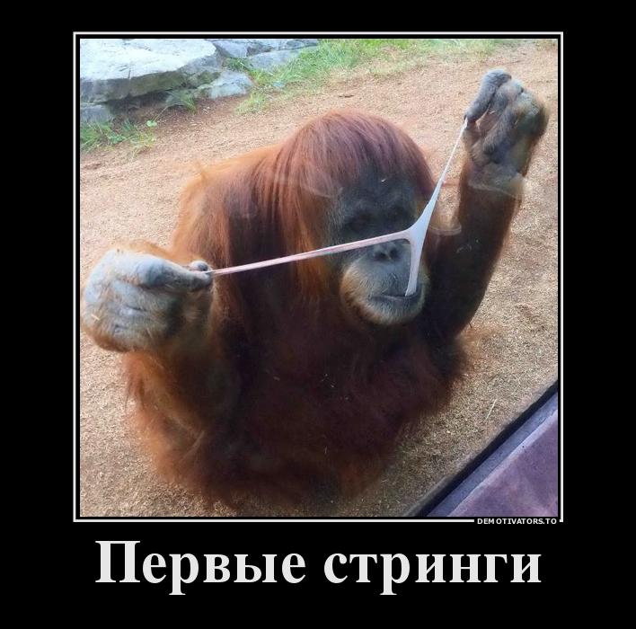 funium_ru-784512 (1)