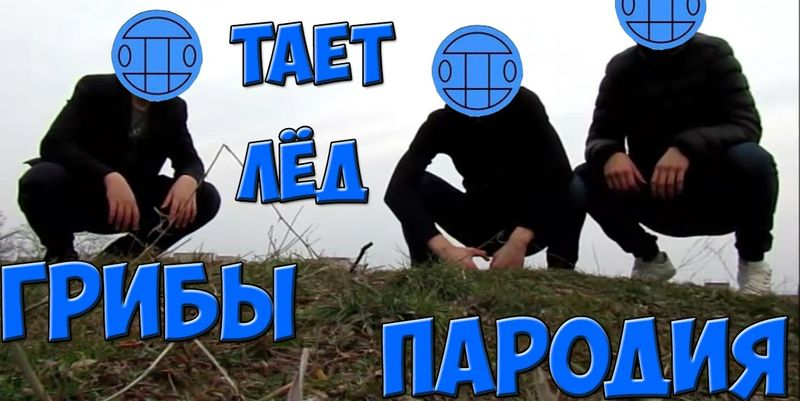 Грибы Тает Лёд Мем (10)