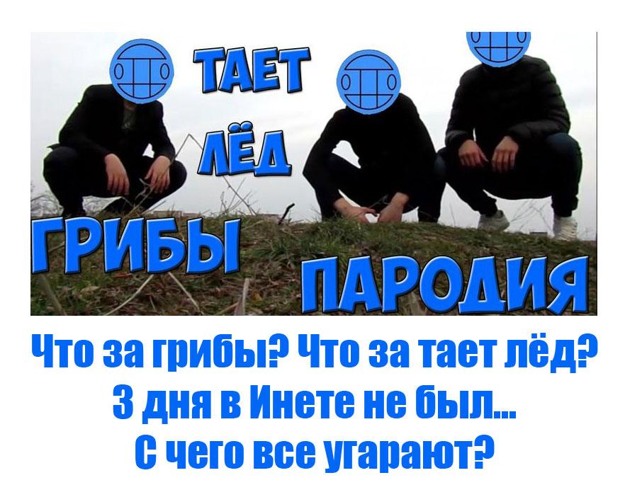 Грибы Тает Лёд Мем (11)