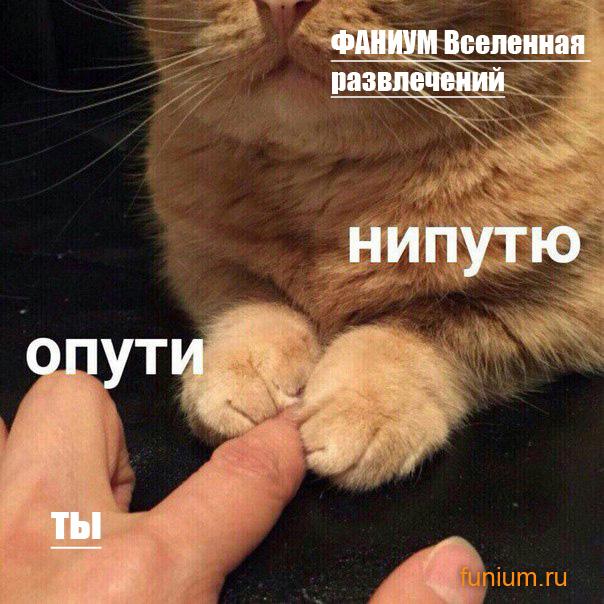 НИПУТЮ-КОМИКСЫ