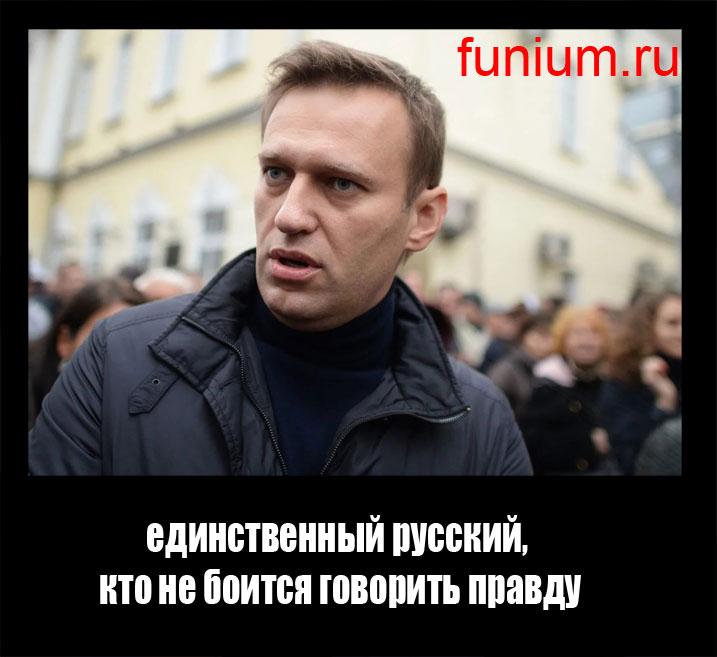 Навальный демотиваторы (3)