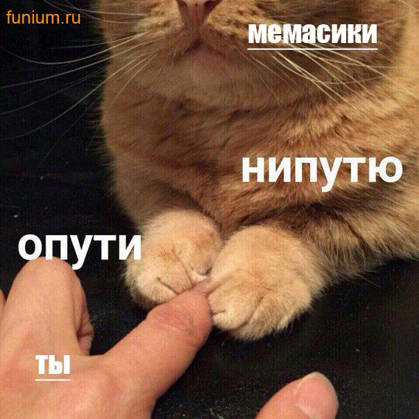 ОПУТИ-мемы