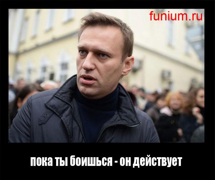 демотиватор Навальный (5)
