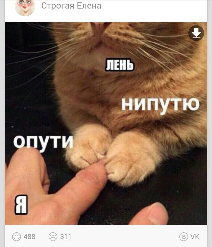мем опути нипутю (3)