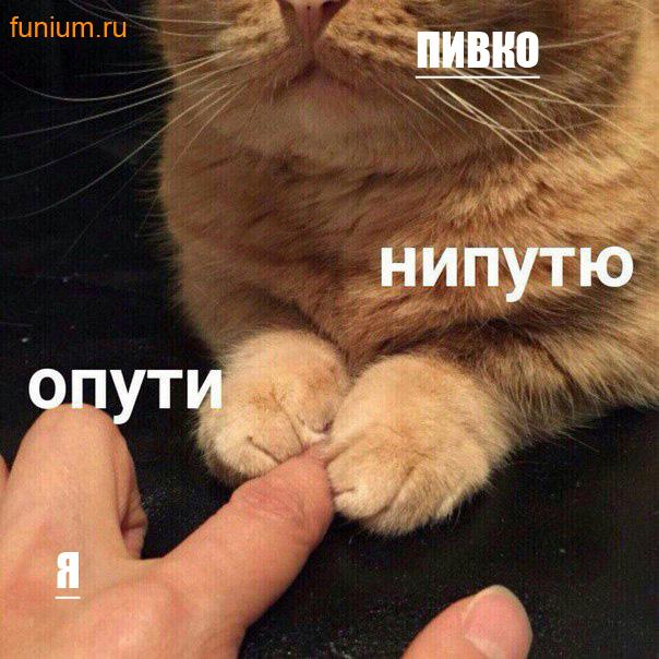 мем опути нипутю (4)