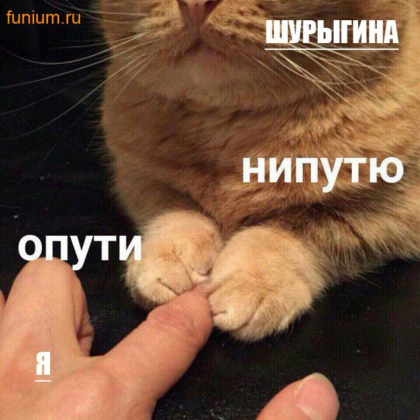 мем опути нипутю (7)