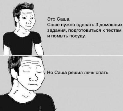 мем-это-саша