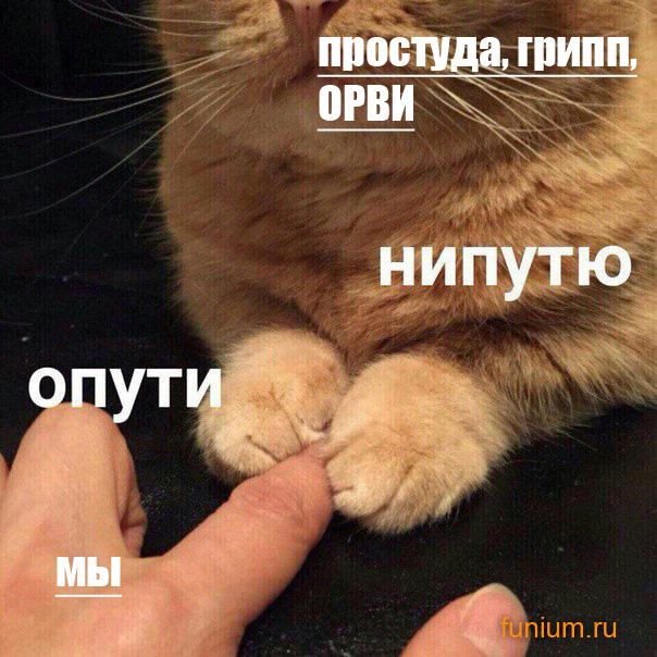 отпусти_непущу_мем