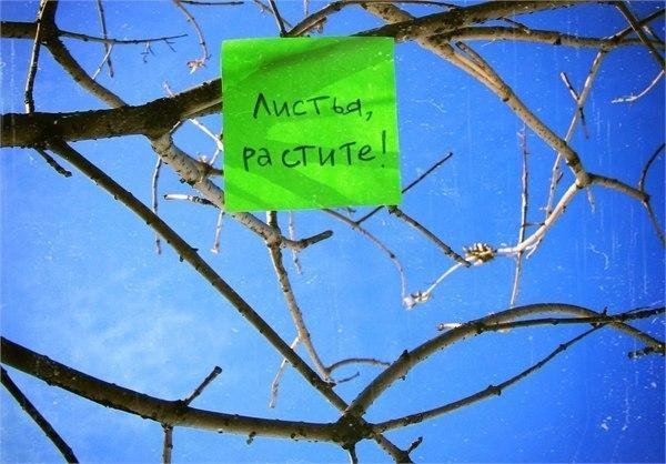 приколы про весну картинки (11)