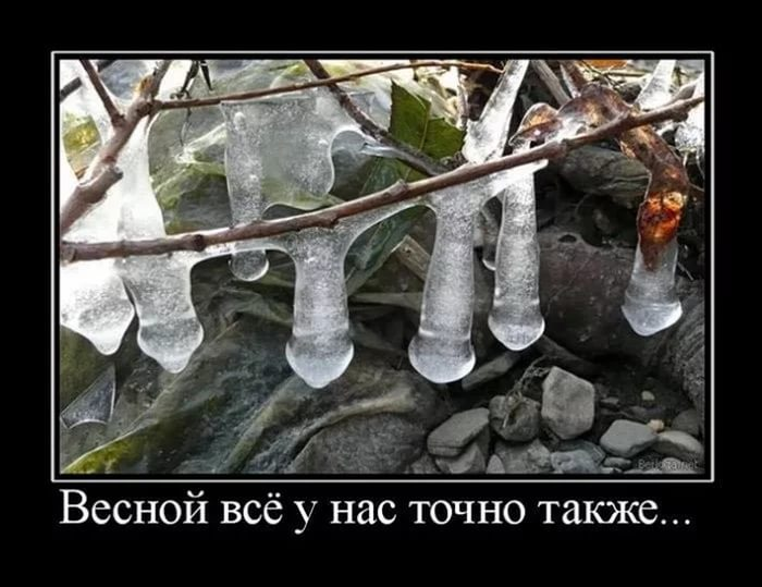 приколы про весну картинки (13)