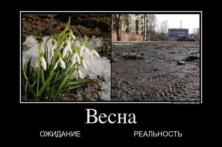 приколы про весну картинки (17)