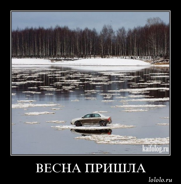 приколы про весну картинки (2)