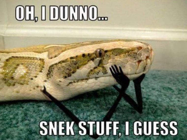 приколы про змей с руками (5)