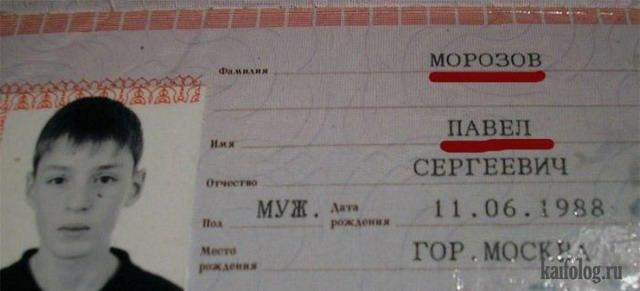 приколы про паспорта (5)